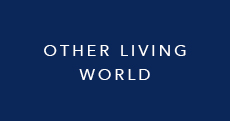 Other Living World