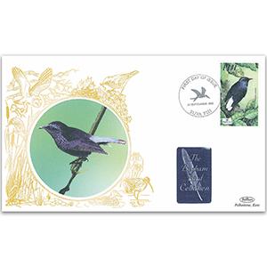 2003 Suva Fiji birds - Fiji Silktail