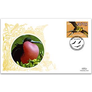 2010 Nevis Birds - Magnificent Frigatebird