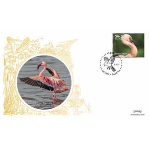 Ghana Birds - Lesser Flamingo