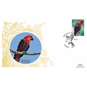 Palau Birds - Eclectus Parrot