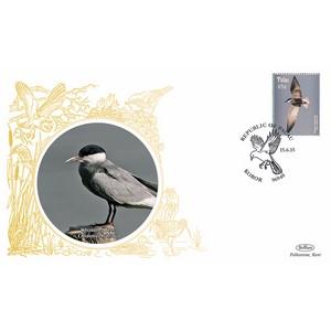Palau Birds - Whiskered Tern