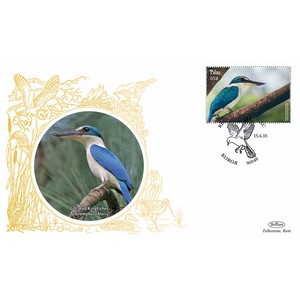 Palau Birds - Collared Kingfisher