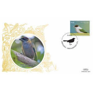 Grenada Birds - Lesser Antillian Tanger