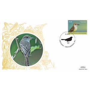 Grenada Birds - Grenada Flycatcher