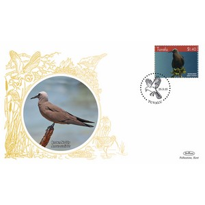 Tuvala Birds - Brown Noddy