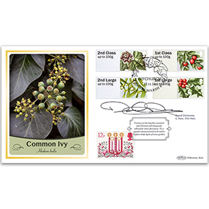 2014 Post & Go Winter Greenery BLCS 2500 - Signed by David Domoney