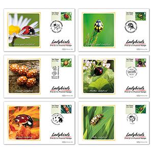 2016 Post & Go Ladybirds BS Set