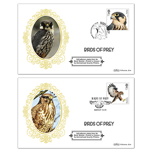 2019 Birds of Prey Retail Booklet BSSP Pair of Covers
