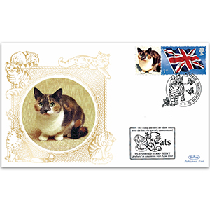 2005 GB Cats - Catstree, Bridgenorth handstamp