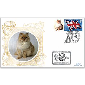 2005 Cat cover - Persian cat cover