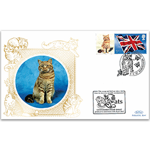 2005 GB Cat cover - Red Tabby Shorthair