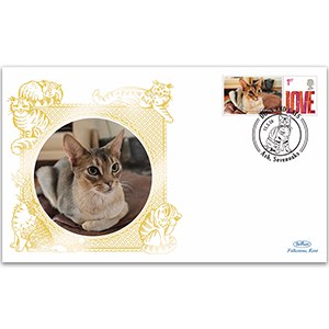 2010 GB Cats - Abyssinian