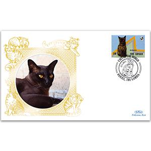 2012 Gambia - Burmese Cat
