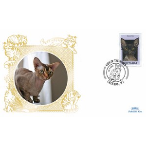 Grenada Cats - Devon Rex
