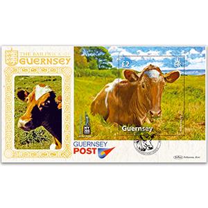 2016 Guernsey - The Guernsey Cow