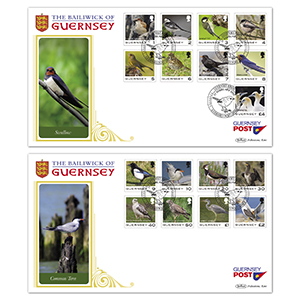 2021 Guernsey - Birds Definitives Pair of Covers