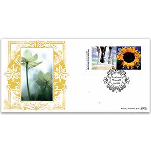 2000 Millennium Booklet GOLD 500 - 2 x 1st Class