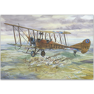 Royal Aircraft Factory B.E 2c - Aircraft of WWI Postcard