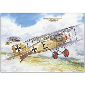 Albatros D2 - Aircraft of WWI Postcard