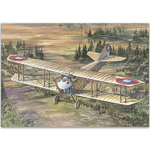 Anatra DS - Aircraft of WWI Postcard