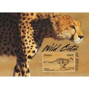 Wild Cats Cheetah 2015 - Miniature Sheet - Ghana