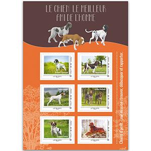 France Hunting Dogs Shlt 27/2/16
