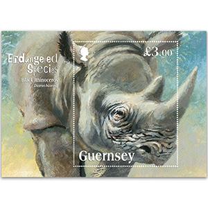 2018 Guernsey Black Rhino 1v M/S