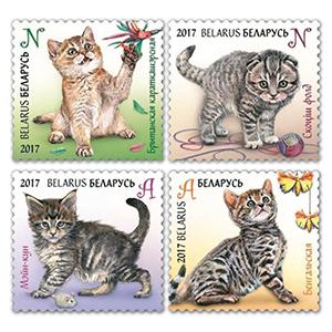 2017 Belarus Kittens 4v Set