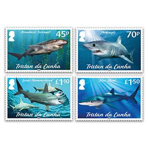 Tristan 2020 Sharks Pt1 4v set