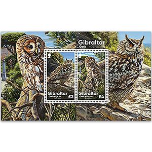 2020 Gibraltar Owls M/S