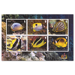 B.I.O.T Butterfly Fish 6v M/S 8/12/20