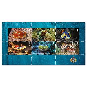 2021 B.I.O.T Sea Slugs 6v Sheetlet