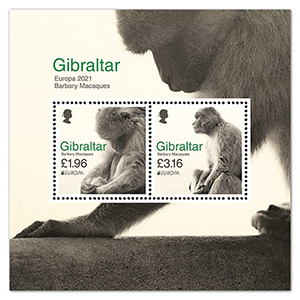 2021 Gibraltar Europa Barbary Macaques 2v m/s