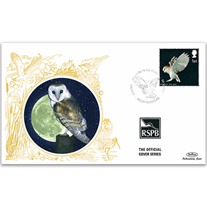 2003 GB - Barn Owl - Benham RSPB Official