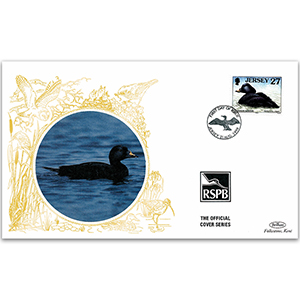 1999 Jersey - Common Scoter