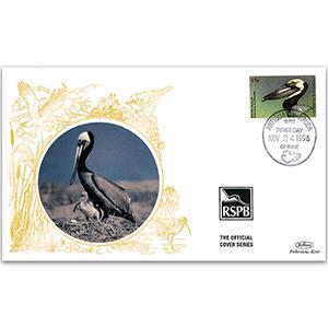 1998 Antigua - Brown Pelican