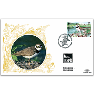 1998 Guernsey - Ringed Plover RSPB Official