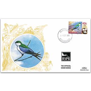 2002 Bahamas - Bahama Swallow
