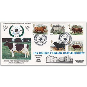 1984 British Cattle - British Friesian Cattle Society Official