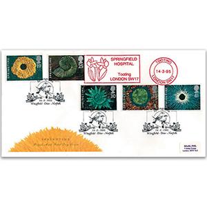 1995 Four Seasons: Springtime - Springfield Hospital Meter Mark