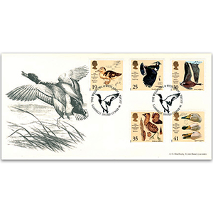 1996 Wildfowl & Wetland Trust - Llanelli h/s