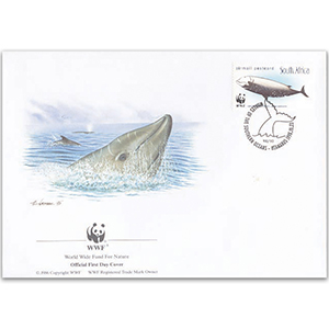 1998 South Africa - Cuvier's Beaked Whale