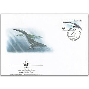 1998 South Africa - Minke Whales